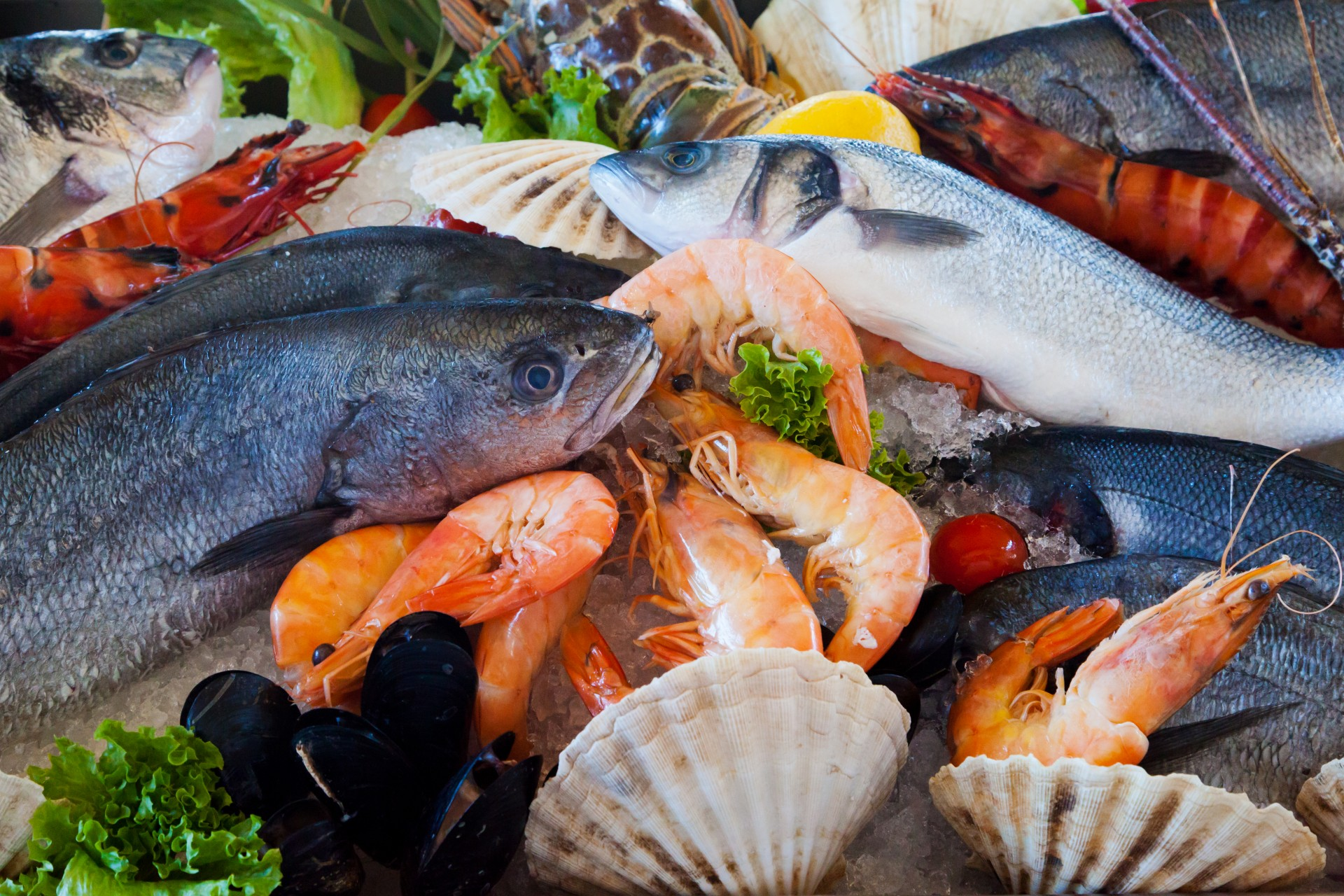Fresh meats and cheeses at casey 39 s and mikes casey 39 s for Fresh fish online